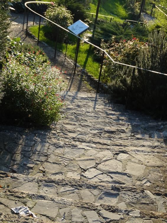 Giardino フィレンツェ delle Rose 01242 1024