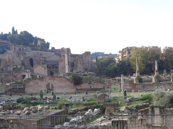ローマ コロッセオ  2103